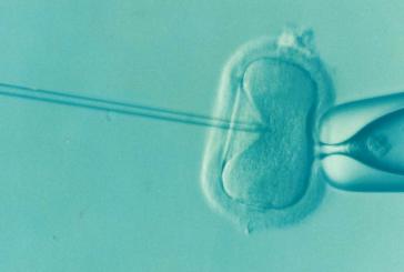 נהריה: חוגגים לידת 100 ילדי מבחנה