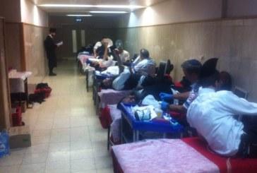 עשרות אברכים התגייסו לקריאה ותרמו דם